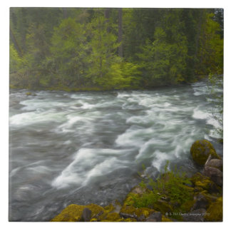 USA, Oregon, Scenic view of Santiam River Large Square Tile