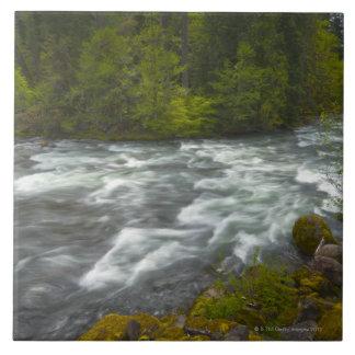 USA, Oregon, Scenic view of Santiam River Tile