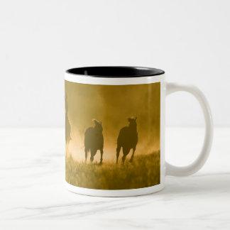 USA, Oregon, Seneca, Ponderosa Ranch. 3 Two-Tone Coffee Mug
