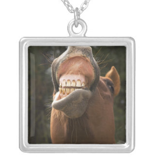USA, Oregon, Seneca, Ponderosa Ranch. A horse Square Pendant Necklace
