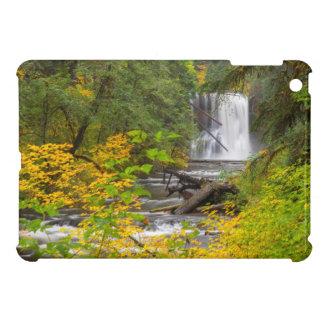 USA, Oregon, Silver Falls State Park 2 iPad Mini Cover