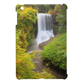 USA, Oregon, Silver Falls State Park 3 iPad Mini Case