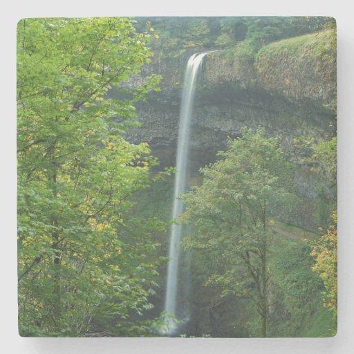 USA, Oregon, Silver Falls State Park Stone Coaster