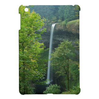 USA, Oregon, Silver Falls State Park iPad Mini Cases