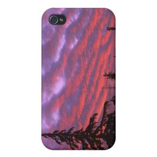 USA, Oregon, Three Sisters Wilderness, Vivid iPhone 4 Cases