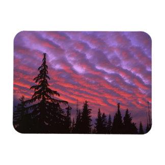 USA, Oregon, Three Sisters Wilderness, Vivid Magnet