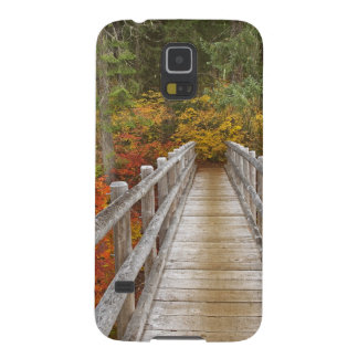 USA Oregon Willamette National Forest Case For Galaxy S5