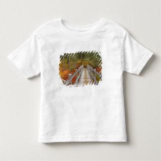 USA, Oregon, Willamette National Forest. Tee Shirt