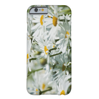 USA, Oregon, Willamette Valley, Selective Barely There iPhone 6 Case