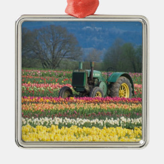 USA, Oregon, Woodburn, Wooden Shoe Tulip 2 Silver-Colored Square Decoration