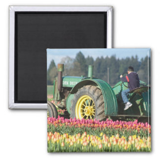 USA, Oregon, Woodburn, Wooden Shoe Tulip Square Magnet