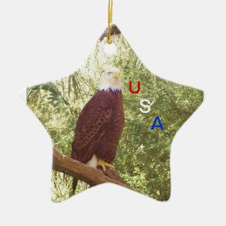 USA Ornament