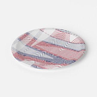 USA PAPER PLATE