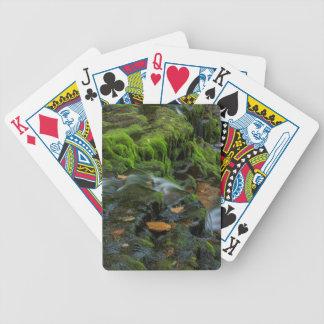USA, Pennsylvania, Benton, Ricketts Glen State Bicycle Poker Cards