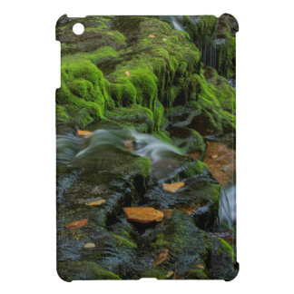 USA, Pennsylvania, Benton, Ricketts Glen State iPad Mini Case