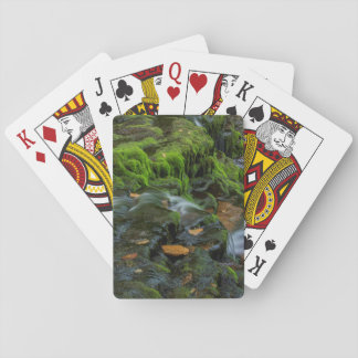 USA, Pennsylvania, Benton, Ricketts Glen State Playing Cards
