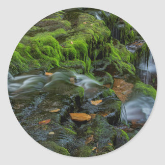 USA, Pennsylvania, Benton, Ricketts Glen State Round Sticker