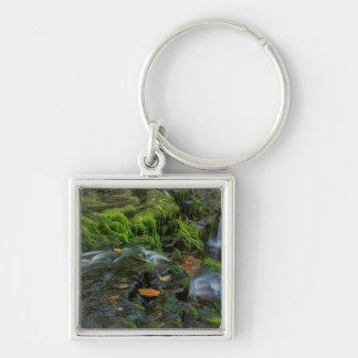 USA, Pennsylvania, Benton, Ricketts Glen State Silver-Colored Square Key Ring