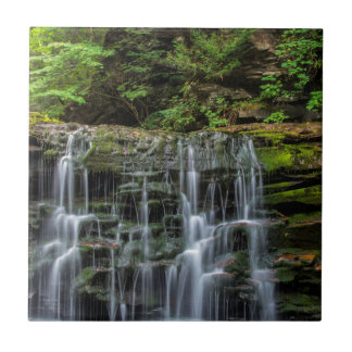 USA, Pennsylvania, Benton. Waterfall In Ricketts Tile