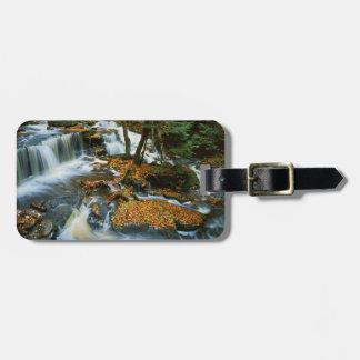 USA, Pennsylvania, Ricketts Glen State Park Bag Tags