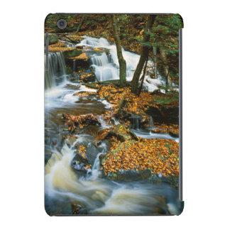 USA, Pennsylvania, Ricketts Glen State Park iPad Mini Retina Covers