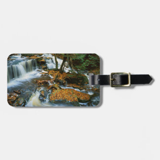 USA, Pennsylvania, Ricketts Glen State Park Tag For Luggage
