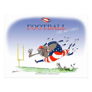 USA stars and stripes, tony fernandes Postcard