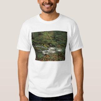 USA, Tennessee. Big South Fork National River Tshirts