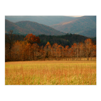 USA, Tennessee. Cades Cove In Smoky Mountain Postcard