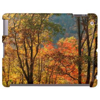 USA, Tennessee. Fall Foliage
