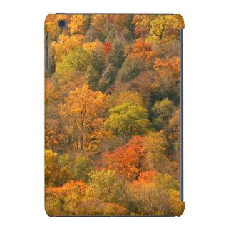 USA, Tennessee. Fall Foliage 2 iPad Mini Cover