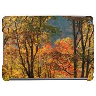 USA, Tennessee. Fall Foliage iPad Air Cover