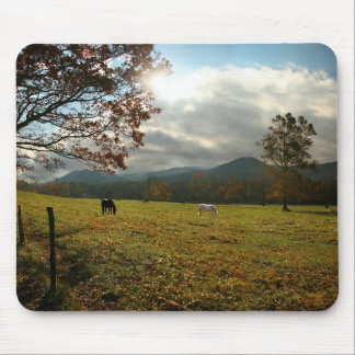 USA, Tennessee. Horses In Cades Cove Valley Mouse Pad