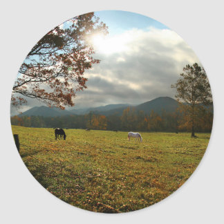 USA, Tennessee. Horses In Cades Cove Valley Round Sticker