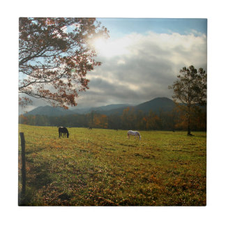 USA, Tennessee. Horses In Cades Cove Valley Small Square Tile