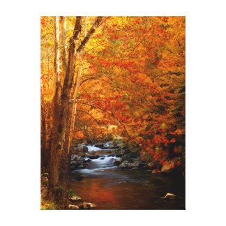 USA, Tennessee. Rushing Mountain Creek 2 Canvas Print