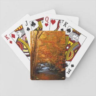 USA, Tennessee. Rushing Mountain Creek 2 Playing Cards