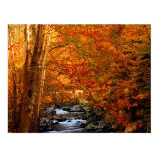 USA, Tennessee. Rushing Mountain Creek 2 Postcard