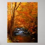 USA, Tennessee. Rushing Mountain Creek 2 Poster