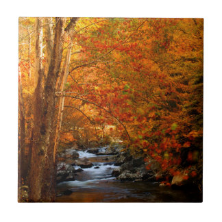 USA, Tennessee. Rushing Mountain Creek 2 Small Square Tile