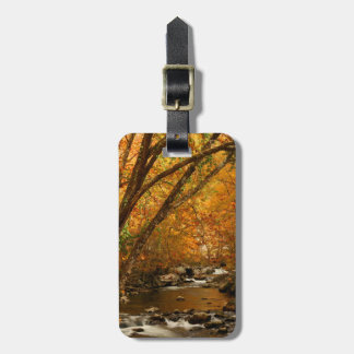 USA, Tennessee. Rushing Mountain Creek 3 Luggage Tags