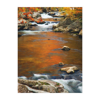 USA, Tennessee. Rushing Mountain Creek 4 Canvas Print