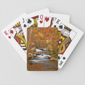 USA, Tennessee. Rushing Mountain Creek Deck Of Cards