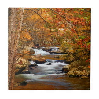 USA, Tennessee. Rushing Mountain Creek Small Square Tile