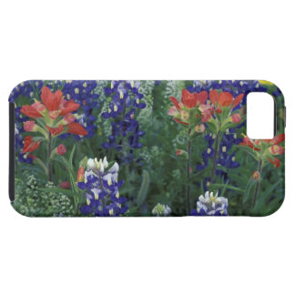 USA, Texas Hill Country. Bluebonnets and iPhone 5 Case
