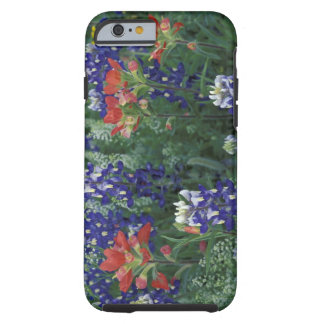 USA, Texas Hill Country. Bluebonnets and Tough iPhone 6 Case