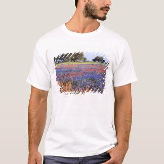 USA, Texas, Llano. Bluebonnets and redbonnets T-Shirt