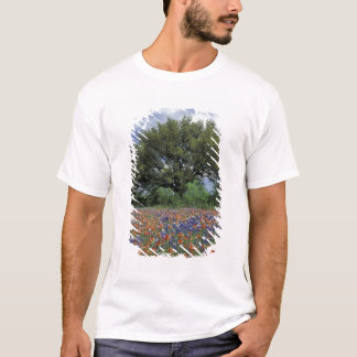USA, Texas, Marble Falls Paintbrush and T-Shirt