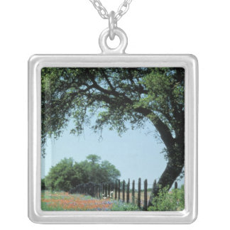USA, Texas, Texas Hill Country Paintbrush and Square Pendant Necklace