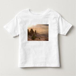 USA; Utah; Canyonlands National Park. View of T-shirts